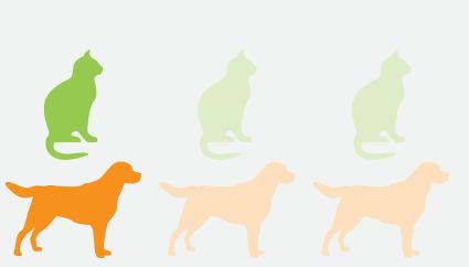 cane e gatto sovrappeso uno su tre